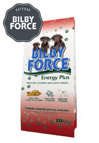 bilbyforce_energyplus